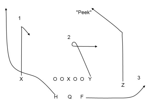 Backyard Football Plays passing game   smart football